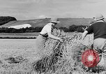 Image of Women Land Army United Kingdom, 1939, second 9 stock footage video 65675053192