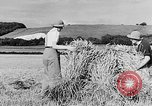 Image of Women Land Army United Kingdom, 1939, second 11 stock footage video 65675053192