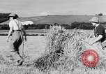 Image of Women Land Army United Kingdom, 1939, second 12 stock footage video 65675053192