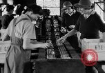 Image of Women Land Army United Kingdom, 1939, second 2 stock footage video 65675053193