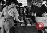 Image of Women Land Army United Kingdom, 1939, second 4 stock footage video 65675053193