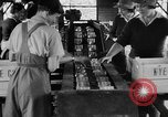 Image of Women Land Army United Kingdom, 1939, second 9 stock footage video 65675053193