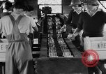 Image of Women Land Army United Kingdom, 1939, second 10 stock footage video 65675053193