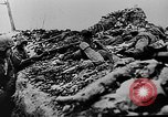 Image of German infantry Nevel Russia, 1944, second 8 stock footage video 65675053350