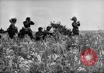 Image of German troops Voronezh Russia, 1943, second 11 stock footage video 65675053438