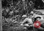 Image of United States troops Okinawa Ryukyu Islands, 1945, second 4 stock footage video 65675053474