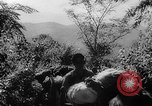 Image of Chinese 38th Infantry Division captures key city Bhamo Burma, 1944, second 11 stock footage video 65675053545
