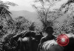 Image of Chinese 38th Infantry Division captures key city Bhamo Burma, 1944, second 12 stock footage video 65675053545