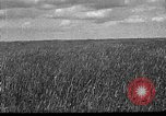 Image of Russian farm Russia Soviet Union, 1942, second 1 stock footage video 65675053673