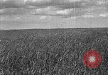 Image of Russian farm Russia Soviet Union, 1942, second 2 stock footage video 65675053673