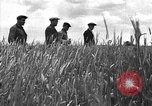 Image of Russian farm Russia Soviet Union, 1942, second 11 stock footage video 65675053673
