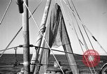 Image of fishing boats Portofino Italy, 1951, second 10 stock footage video 65675053697