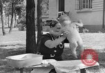 Image of bathing an infant Greenbelt Maryland USA, 1939, second 10 stock footage video 65675053713