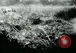Image of German tanks Germany, 1944, second 5 stock footage video 65675053999