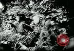 Image of German tanks Germany, 1944, second 6 stock footage video 65675053999