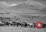 Image of Kirghizia Kyrgyz Soviet Socialist Republic, 1946, second 6 stock footage video 65675054037