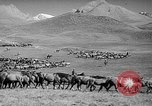 Image of Kirghizia Kyrgyz Soviet Socialist Republic, 1946, second 7 stock footage video 65675054037