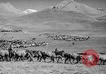 Image of Kirghizia Kyrgyz Soviet Socialist Republic, 1946, second 8 stock footage video 65675054037