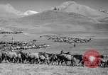 Image of Kirghizia Kyrgyz Soviet Socialist Republic, 1946, second 9 stock footage video 65675054037