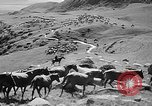 Image of Kirghizia Kyrgyz Soviet Socialist Republic, 1946, second 11 stock footage video 65675054037