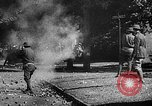 Image of riots and strikes United States USA, 1930, second 2 stock footage video 65675054114