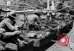 Image of Coal miners Kentucky United States USA, 1934, second 11 stock footage video 65675054116