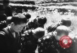 Image of Japanese culture Japan, 1942, second 6 stock footage video 65675054158