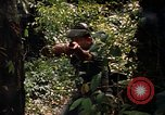 Image of United States soldier Panama, 1969, second 10 stock footage video 65675054579