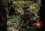 Image of United States soldier Panama, 1969, second 11 stock footage video 65675054579