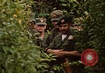 Image of jungle traps Fort Sherman Panama, 1969, second 2 stock footage video 65675054607