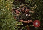 Image of jungle traps Fort Sherman Panama, 1969, second 3 stock footage video 65675054607