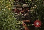 Image of jungle traps Fort Sherman Panama, 1969, second 10 stock footage video 65675054607