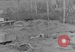 Image of Fox fur farm Alaska USA, 1929, second 7 stock footage video 65675054667