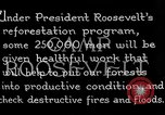 Image of reforestation program by CCC Washington DC USA, 1936, second 9 stock footage video 65675054704