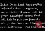 Image of reforestation program by CCC Washington DC USA, 1936, second 12 stock footage video 65675054704