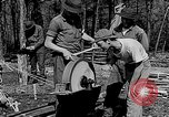 Image of reforestation program Washington DC USA, 1936, second 7 stock footage video 65675054706