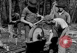 Image of reforestation program Washington DC USA, 1936, second 10 stock footage video 65675054706
