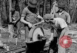 Image of reforestation program Washington DC USA, 1936, second 11 stock footage video 65675054706