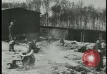 Image of German citizens tour concentration camps Germany, 1945, second 2 stock footage video 65675054785