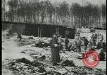 Image of German citizens tour concentration camps Germany, 1945, second 5 stock footage video 65675054785