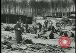 Image of German citizens tour concentration camps Germany, 1945, second 7 stock footage video 65675054785