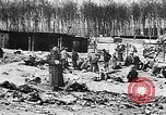 Image of German citizens view concentration camp Germany, 1945, second 6 stock footage video 65675054792