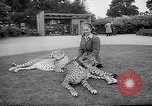 Image of Whipsnade Zoo Whipsnade England, 1965, second 4 stock footage video 65675054828