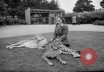 Image of Whipsnade Zoo Whipsnade England, 1965, second 5 stock footage video 65675054828