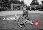Image of Whipsnade Zoo Whipsnade England, 1965, second 6 stock footage video 65675054828