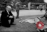 Image of Whipsnade Zoo Whipsnade England, 1965, second 10 stock footage video 65675054828