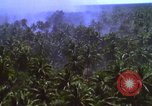 Image of American bombardment of Vietcong target areas Vietnam, 1965, second 12 stock footage video 65675054859
