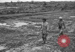 Image of Japanese prisoners Okinawa Ryukyu Islands, 1945, second 6 stock footage video 65675054930
