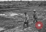 Image of Japanese prisoners Okinawa Ryukyu Islands, 1945, second 7 stock footage video 65675054930