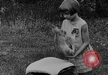 Image of rabbit hypnotized Glen Ellyn Illinois USA, 1930, second 12 stock footage video 65675054980